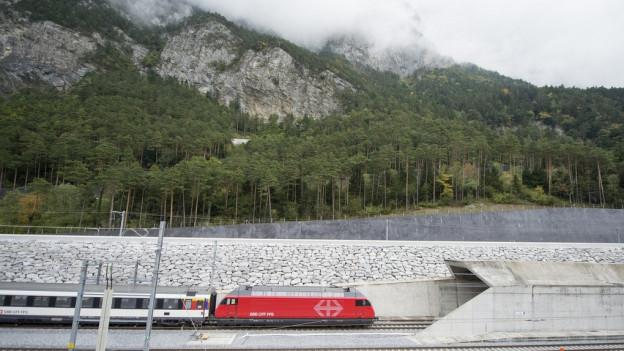 Zug fährt in Tunnel