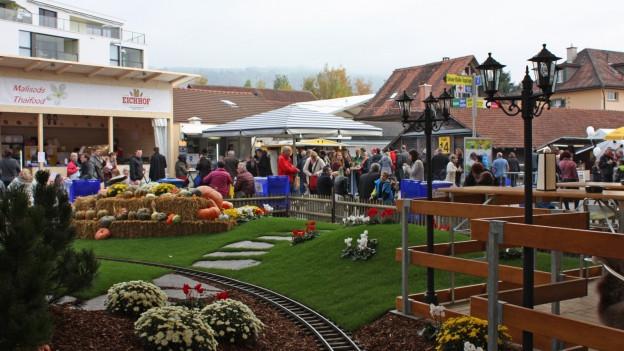 Viele interessierte und kauffreudige Besucherinnen und Besucher an der Zuger Messe.