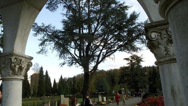 Der Friedhof Friedental in Luzern.