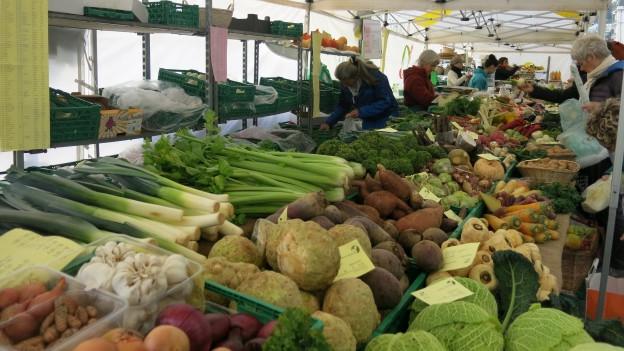 Wegen den milden Temperaturen - gibt es Gemüse im Überfluss