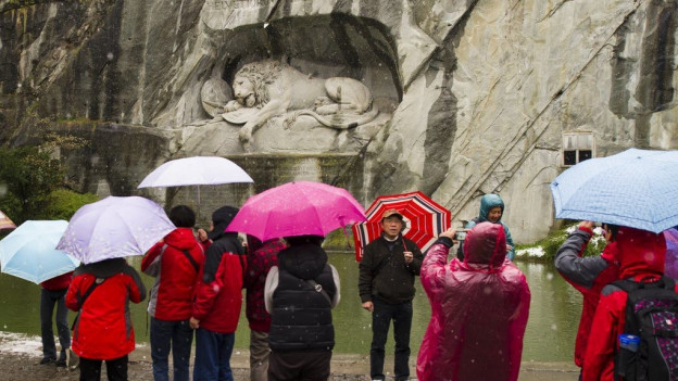 Mit Eintritten für das Löwendenkmal die Umgebung aufwerten ?