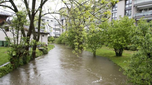Ein Bach in einer Wohngegend führt viel Wasser.
