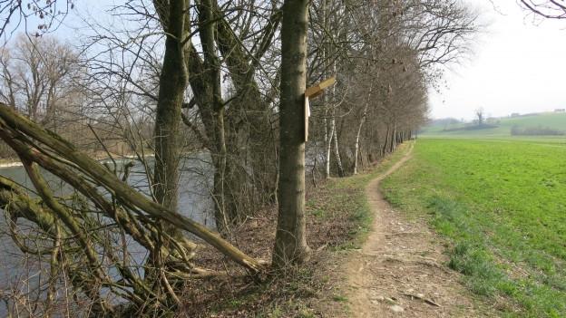 Fluss mit Damm.