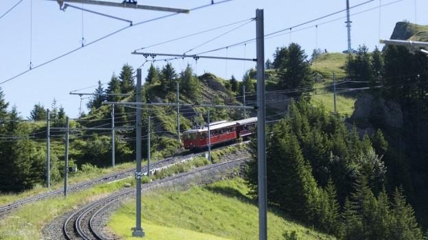 Teilunterbruch der Rigi Bahnen wegen Steinschlaggefahr.