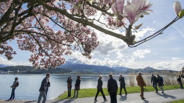 Der Quai in Luzern soll velofrei bleiben.