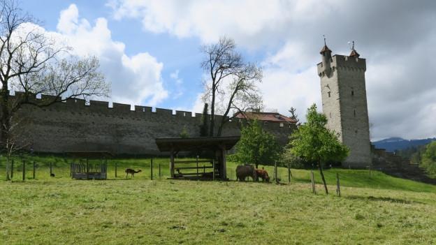 Der Kulturhof «Hinter Musegg» mitten in der Stadt Luzern