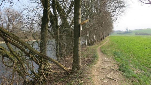 Das Reussufer soll besser vor Hochwasser geschützt und renaturiert werden.