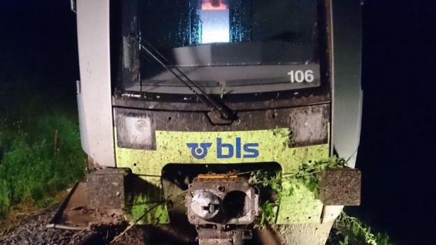 Der Zug fuhr in einen Erdrutsch.