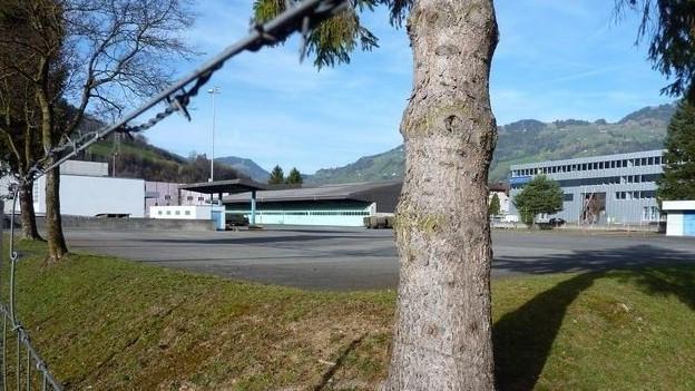 Der Bund favorisiert das Militärareal Wintersried in Seewen für ein künftiges Bundesasylzentrum. ZVG