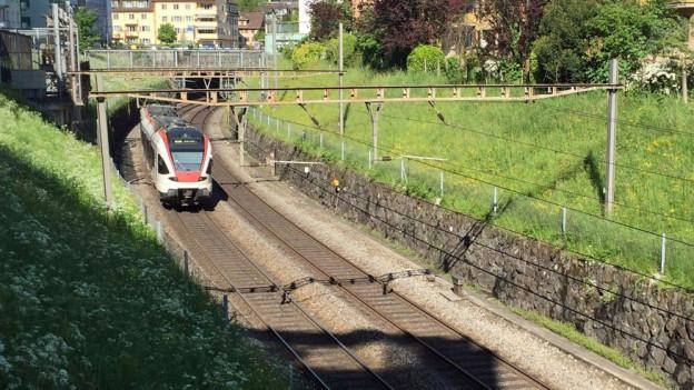 Ein Zug bei der Einfahrt in die Stadt Luzern.