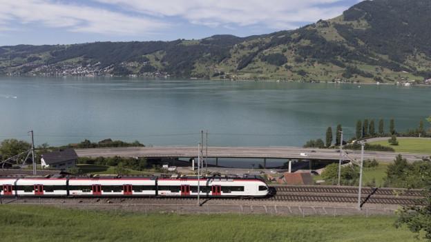 Ein Zug fährt an einem See vorbei.