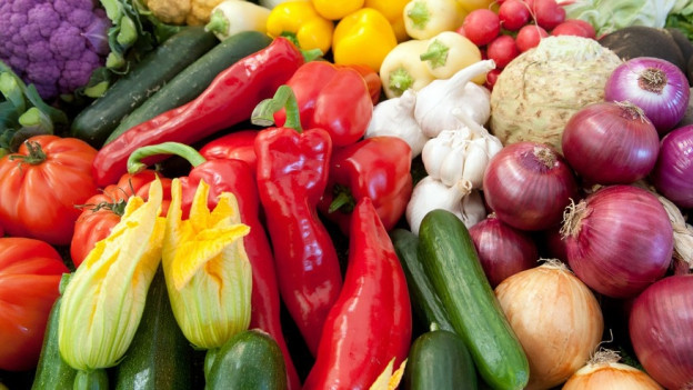 Stadtrat lehnt Ernährungsinitiative ab