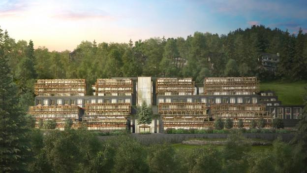Das Waldhotel auf dem Bürgenstock soll auch eine Rehaklinik sein