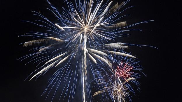 Feuerwerkverbot in der Gemeinde Lachen