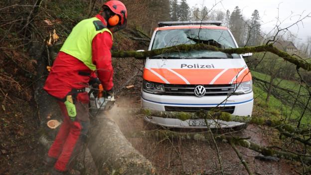 Im Kanton Zug wurde auch ein Polizeiauto in Mitleidenschaft gezogen.