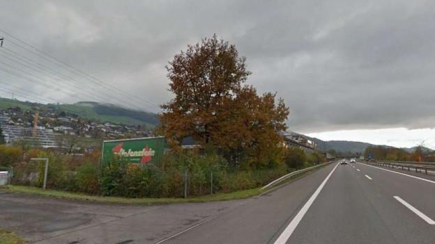 Weil die Anwohner der A14 in Gisikon-Root am Hang wohnen, wären sie durch Lärmschutzwände nicht genügend vor dem Lärm der Autobahn geschützt.
