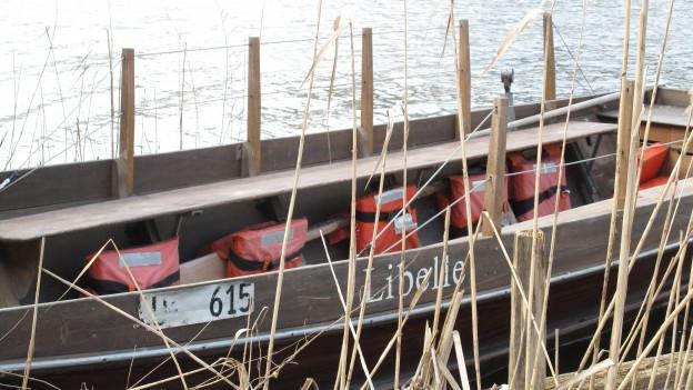 Die Fähre auf dem Rotsee.