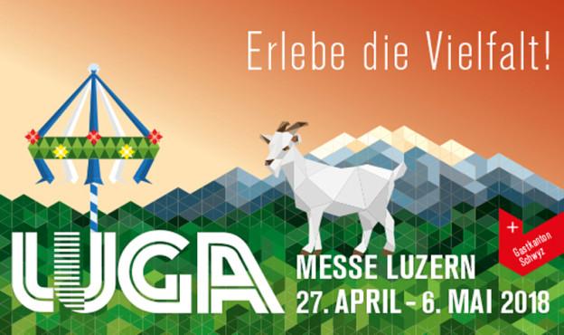 450 Aussteller zeigen an der Frühlingsmesse Luga ihre Produkte