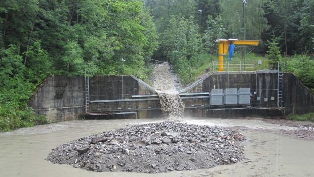 Dank den Forschungen im regenreichen Alptal im Kanton Schwyz kann beispielsweise der Hochwasserschutz verbessert werden.