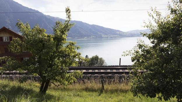 Bei Walchwil wird die SBB-Linie ausgebaut.