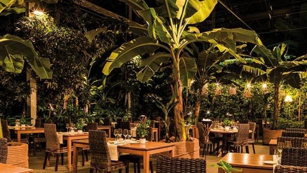 Das Tropenhaus produziert und serviert tropische Früchte.