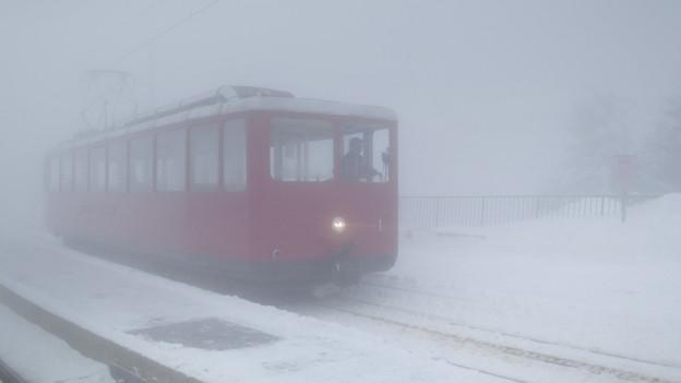 Der Unfall passierte auf offener Strecke im dichten Nebel.