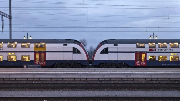 S-Bahn bei Pfäffikon im Kanton Schwyz.