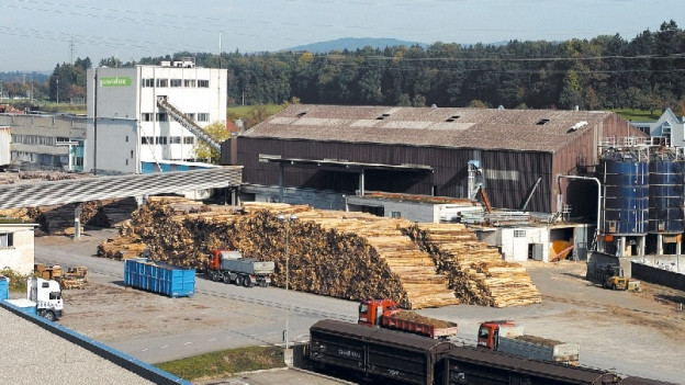 Die Schliessung des Pavatex-Werkes in Cham löst Betroffenheit in der Holzbranche aus.