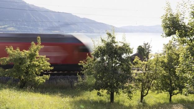 Für den Ausbau der Doppelspur bei Walchwil muss die Strecke komplett gesperrt werden.