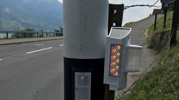 Blinklicht an einem Strassen-Signalpfosten.