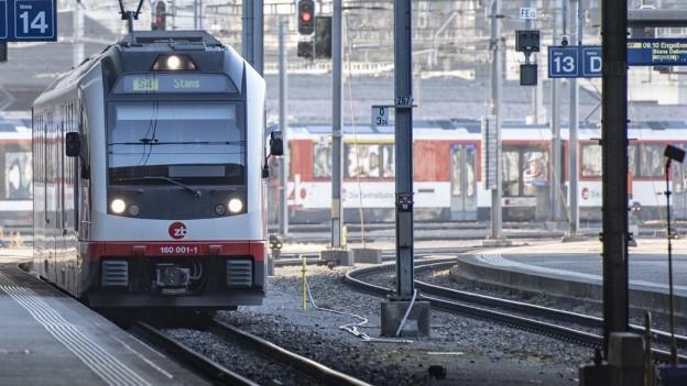 Ein Zug fährt in den Luzerner Bahnhof ein.