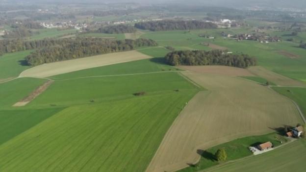 Auf diesem Gelände soll Kies abgebaut werden.