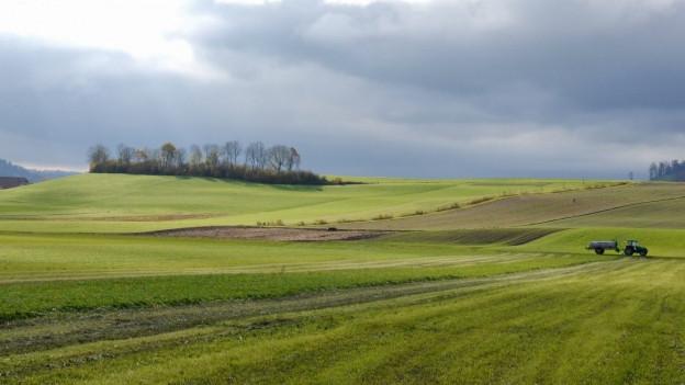 Die Co2-Emissionsbeschränkung für Höfe kommt nicht.