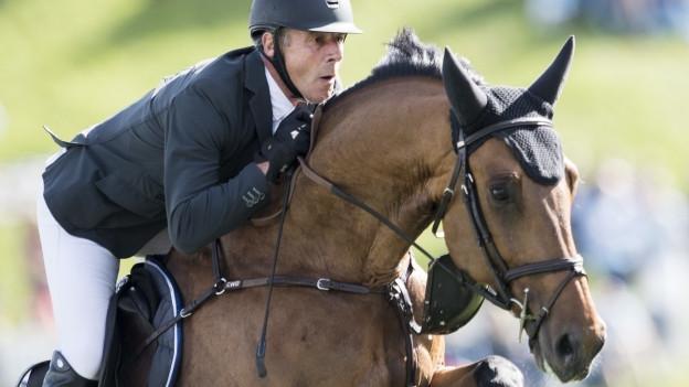 Ein Mann mit schwarzem Reiterhelm auf einem braunen Pferd.