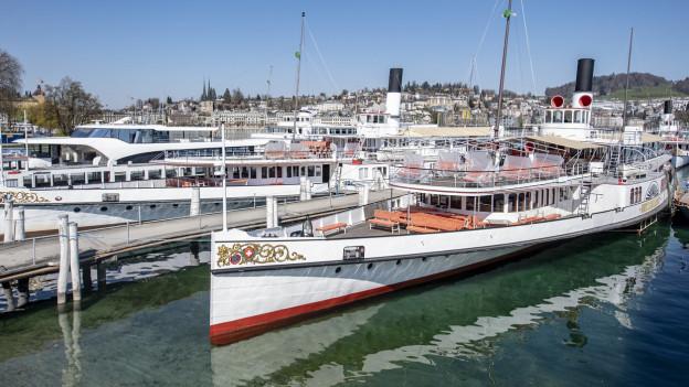 SGV-Schiffe in der Werft in Luzern.
