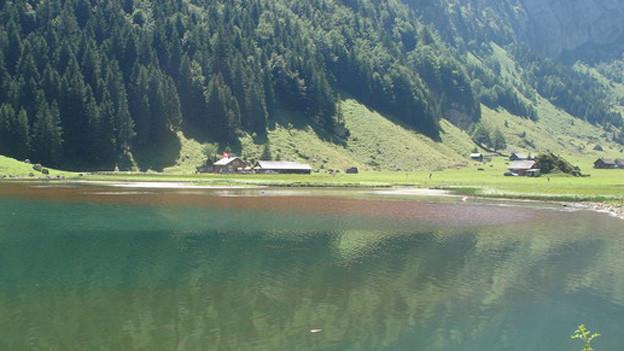 Nach dem Seealpsee verfärben sich nun erstmals weitere Seen im Alpsteingebiet rot