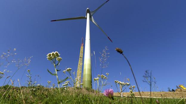 Windkraftwerk in der Innerschweiz
