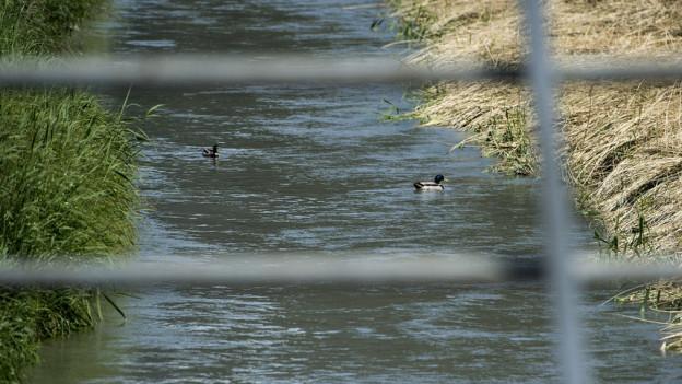 Nun auch Belastungen im Grund- und Trinkwasser in der Nähe von Visp.
