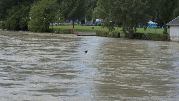 Kein Bad in der Aare: Hochwasser vom 13. Juli 2014