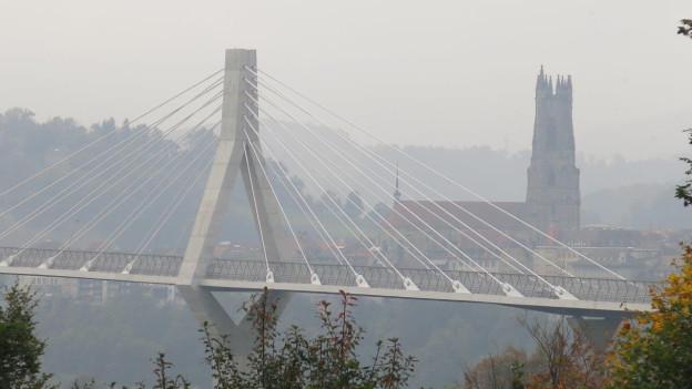 Die längste Schrägseilbrücke der Schweiz.