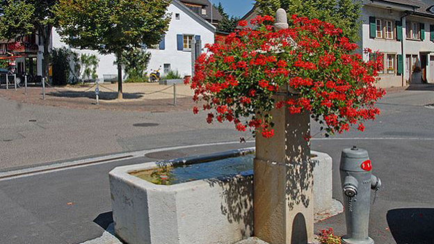 Ein Brunnen in der Gemeinde Bubendorf