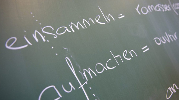 Das Erlernen einer zweiten Landessprache in der Primarschule ist Pflicht, sagt das Bundesamt für Kultur.