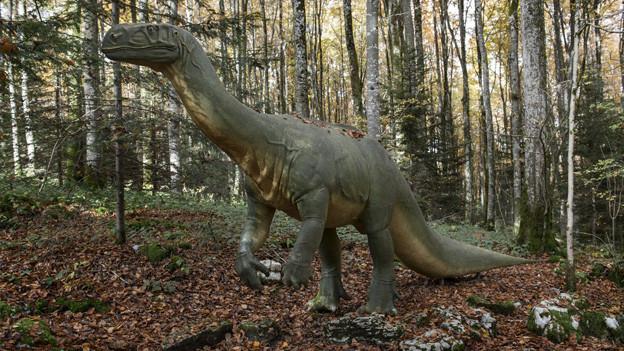 Ein Plateosaurus spaziert durch den Wald.