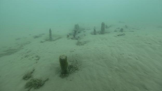 BRonzezeitliche Funde im Thunersee werfen neues Licht auf die Siedlungsgeschichte.