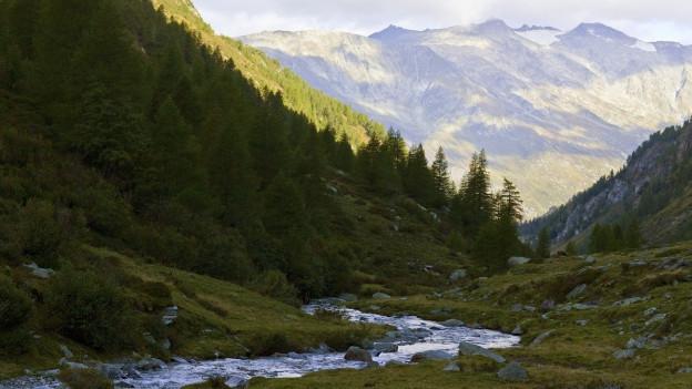 Das Hochtal «Val di Carassino» wäre Teil des regionalen Naturparks.