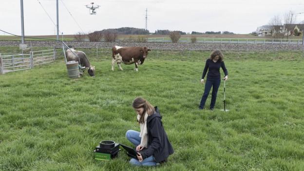 Der Thurgauer Agroscope-Standort Tänikon soll geschlossen werden.