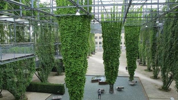 Viel Grün sorgt für eine kühlere Umgebung