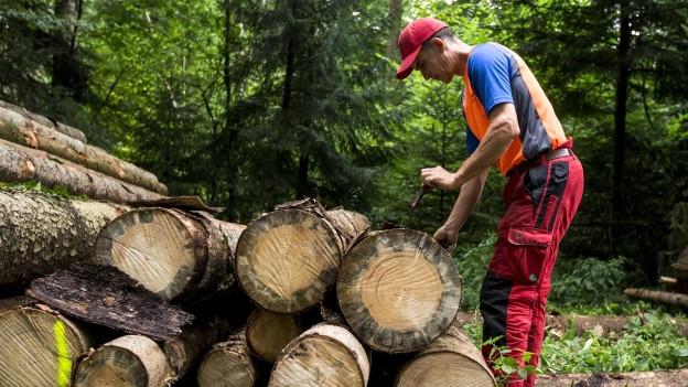 Ein Förster bei der Holzarbeit.
