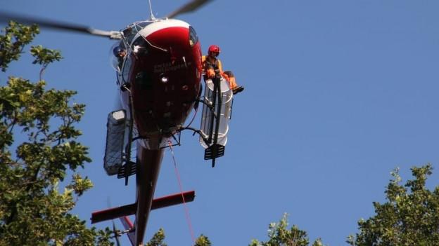 Ein Helikopter über Baumwipfeln.