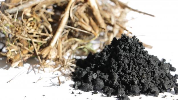 Aus Grünfabfall wird Pflanzenkohle